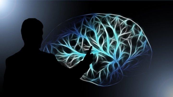 Назван простой способ улучшить работу мозга