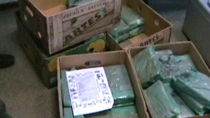 В Петербург пришел контейнер с кокаином в бананах