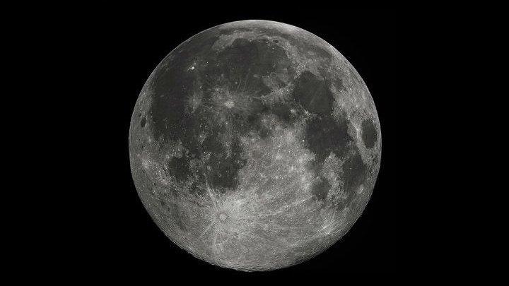 """Первый в мире росток """"лунного хлопка"""" погиб"""