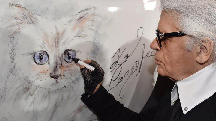 Кошка Лагерфельда «поблагодарила» подписчиков за соболезнования