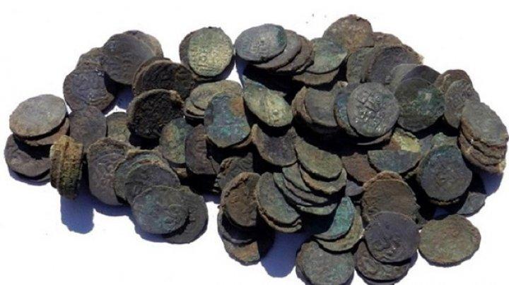 Суслик помог археологам обнаружить клад