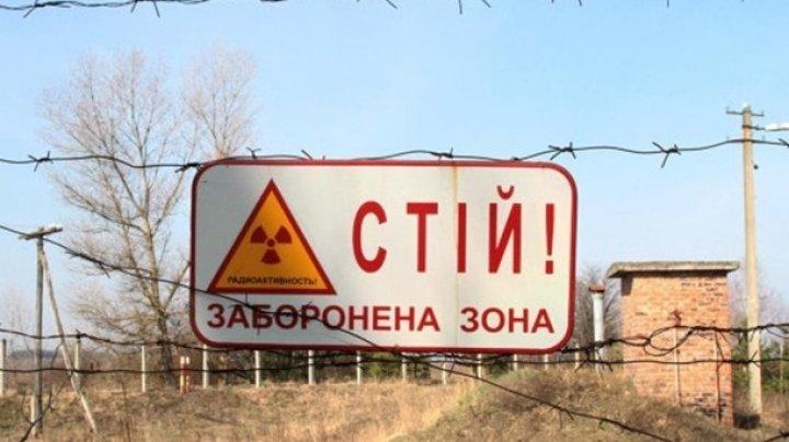 В Чернобыле резко увеличилось количество посетителей