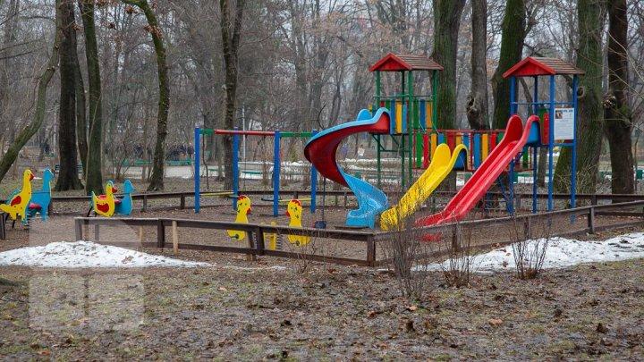 """В столичном парке """"Alunelul """" планируют большую перестройку"""