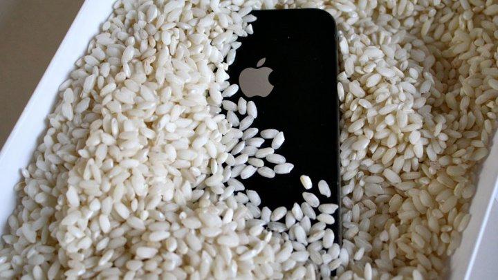 Эксперты доказали, что смартфон нельзя сушить в рисе
