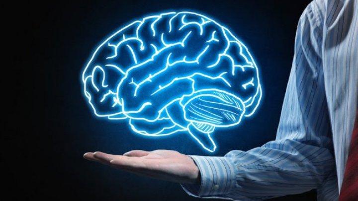 Ученые: жир способствовал росту человеческого мозга