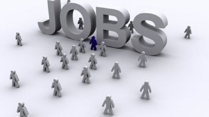 В Молдове за последний месяц появилось около 500 вакансий