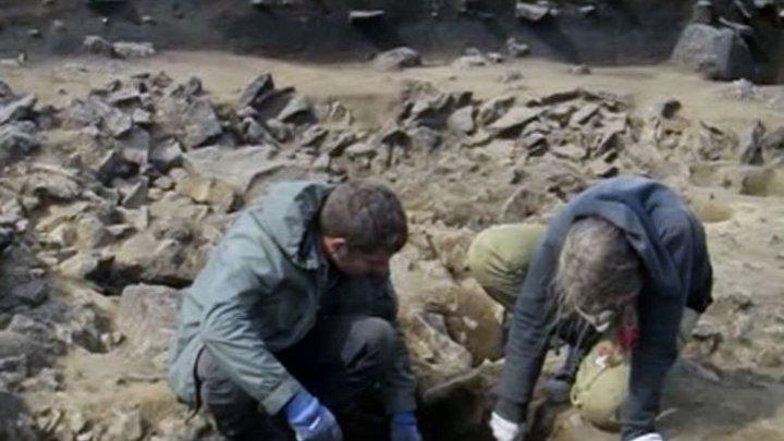 Археологи нашли следы неизвестной цивилизации