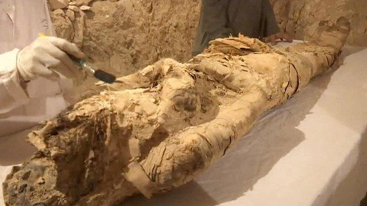 Египетские мумии пытались отправить в Бельгию почтой