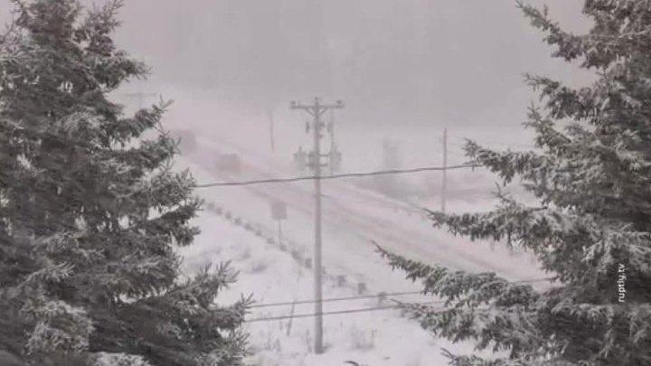 Десятки тысяч канадцев остались без электричества из-за шторма