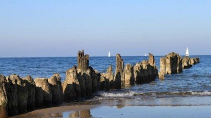 У берегов Дании за три года образовались 11 новых островов