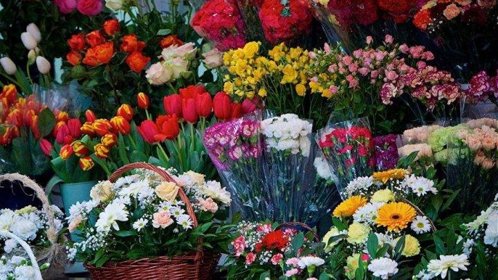 Флористы рассказали, какие цветы следует дарить женщинам на 8 марта