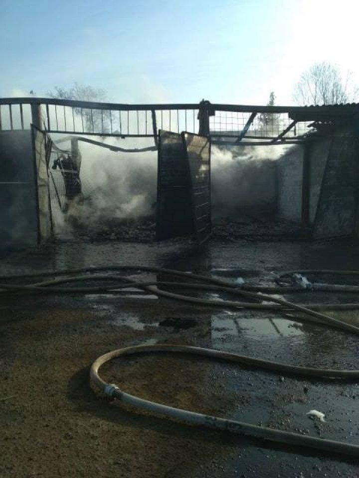 Пожар в Вулканештах: повреждены восемь гаражей и две машины (фото)