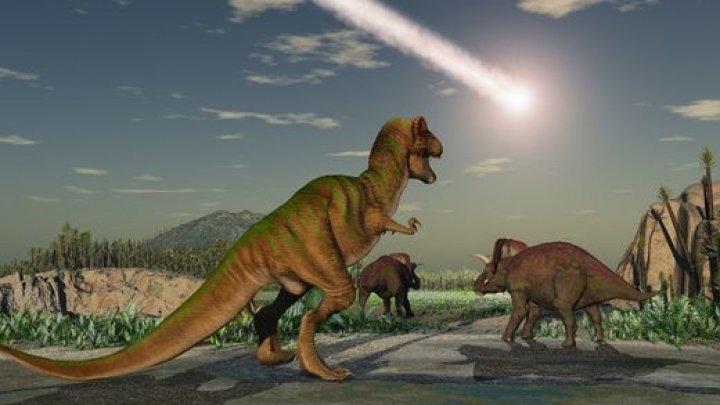 В США обнаружили гигантское кладбище динозавров