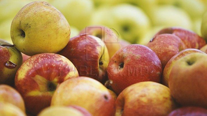 20 тонн молдавских яблок не пропустили в Россию