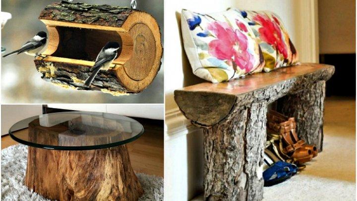 Житель Каушан изготавливает необычные предметы декора из пней и корневищ