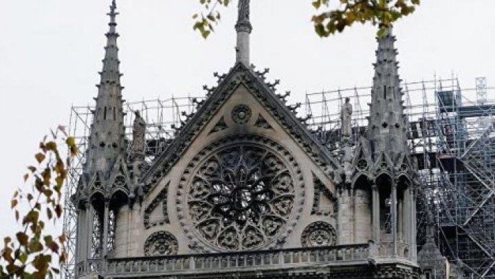 Девятилетняя британка прислала 3 евро на восстановление Нотр-Дама