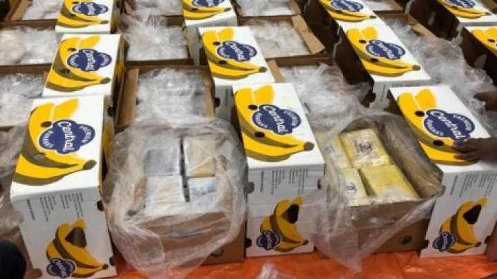 В Нидерландах среди бананов обнаружили партию кокаина весом в 1,6 тонны