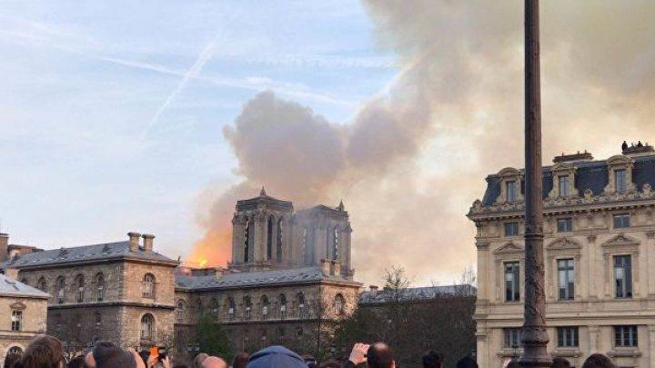 Прокуратура начала расследование из-за пожара в соборе Парижской богоматери