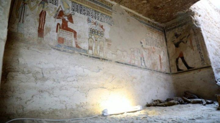 В Египте нашли гробницу с мумиями мышей и птиц (фото)
