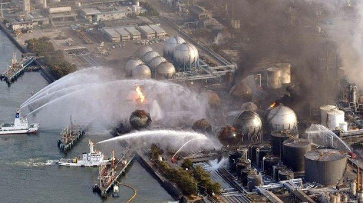 В Японии люди начали вновь селиться рядом с АЭС Фукусима