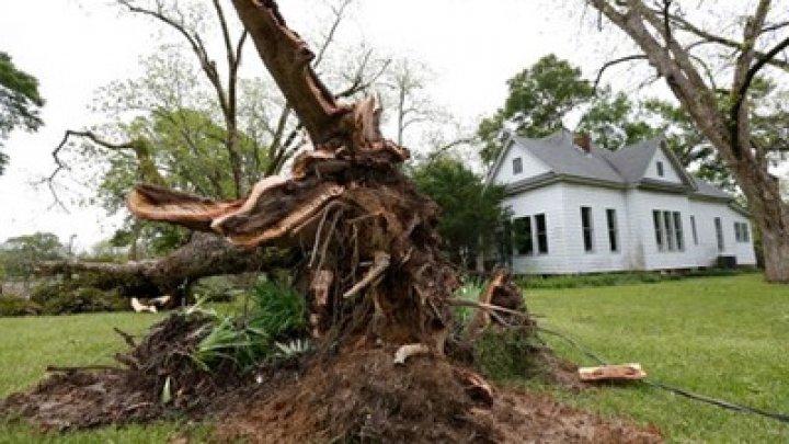 Из-за мощного урагана в Техасе погибли восемь человек