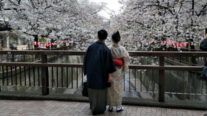 Учёные рассказали, сколько девственниц в Японии