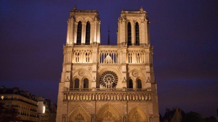 Собор Парижской Богоматери переделают в теплицу