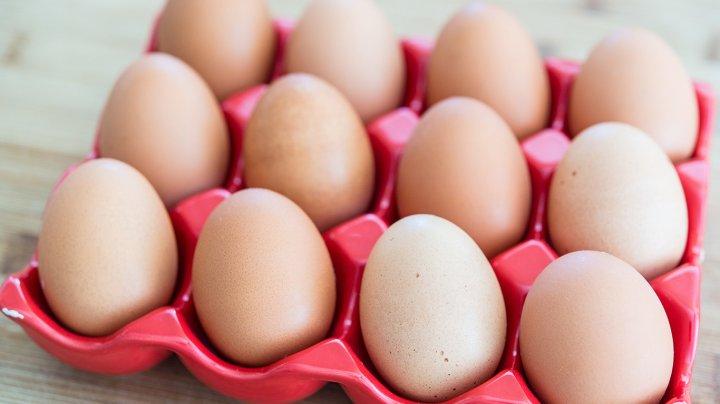 Ученые рассказали об опасности ежедневного употребления яиц