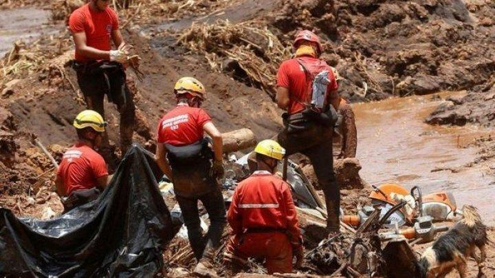 Прорыв дамбы в Бразилии: число погибших возросло до 224