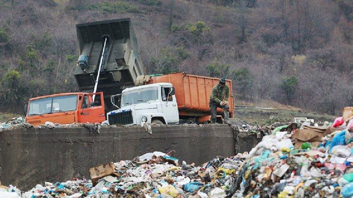 В Тюмени семья случайно выбросила в мусор пакет с миллионами