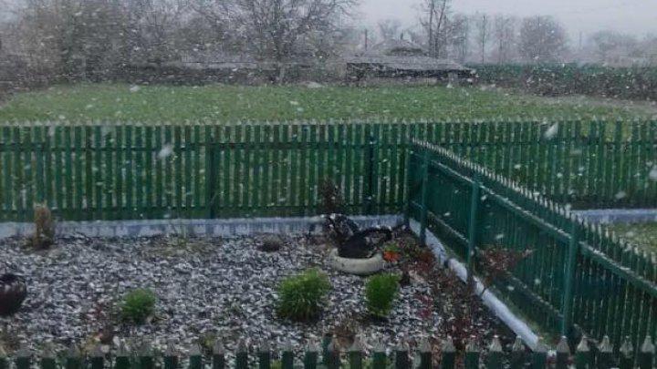 На севере страны выпал снег (фото)