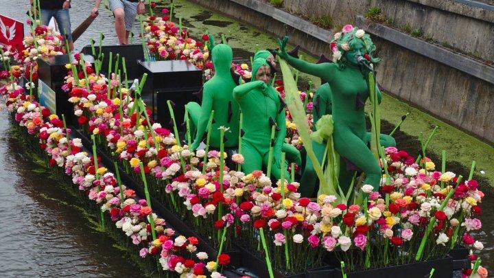 В Нидерландах состоялся один из крупнейших в мире цветочных фестивалей