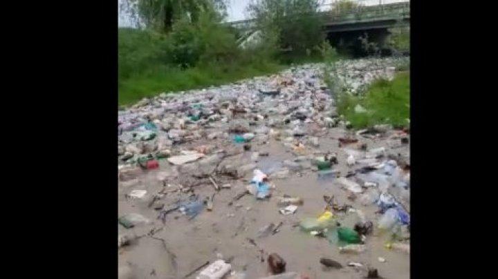 В Румынии по реке плывет гора мусора: шокирующее видео