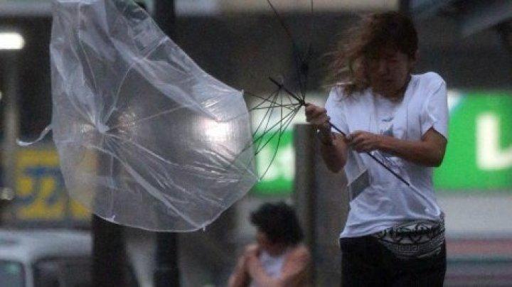 Дожди обесточили 1,5 тыс. домов в Японии