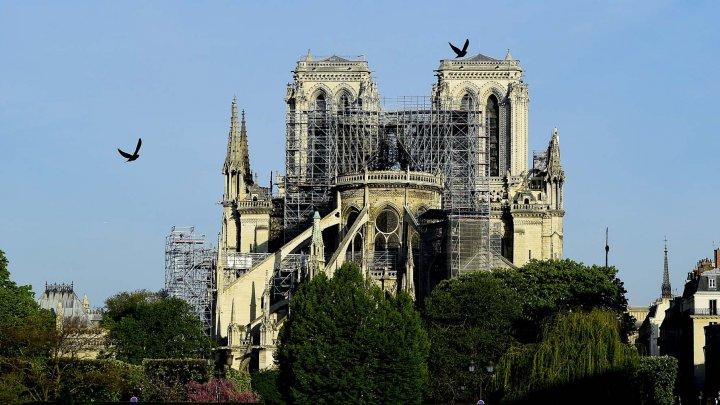 Во Франции приняли специальный закон о реставрации собора Нотр-Дам