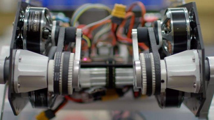 Студенты Стэнфорда создали прыгающего робота (видео)