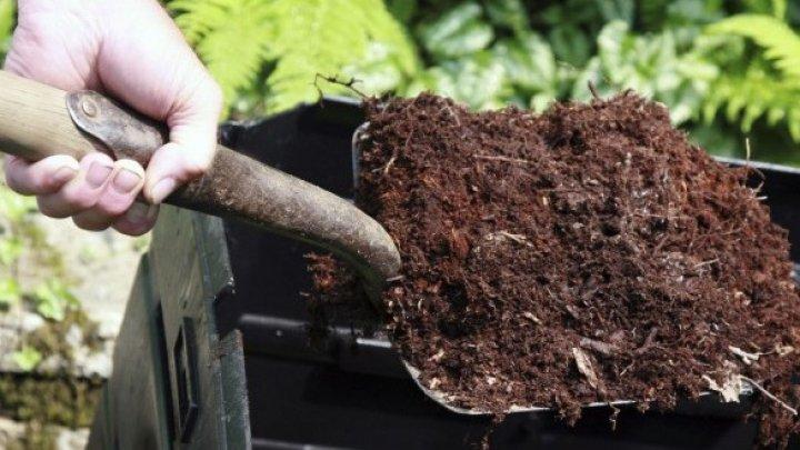 В штате Вашингтон разрешили превращать человеческие останки в плодородный компост