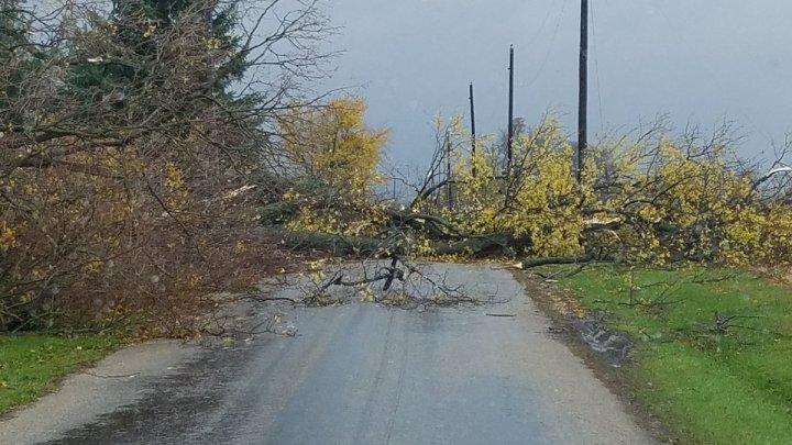 В американском штате Огайо пронесся мощный торнадо (фото)