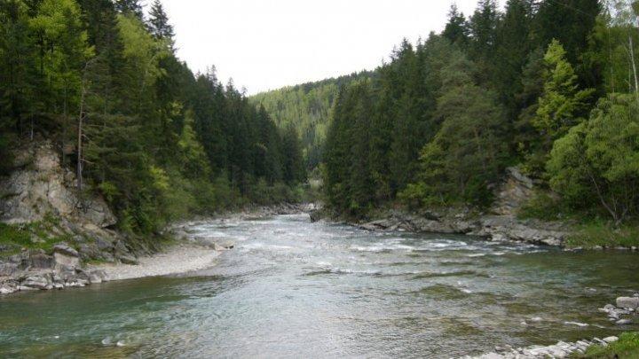 Предупреждение: уровень воды в реке Прут поднимется примерно на два метра