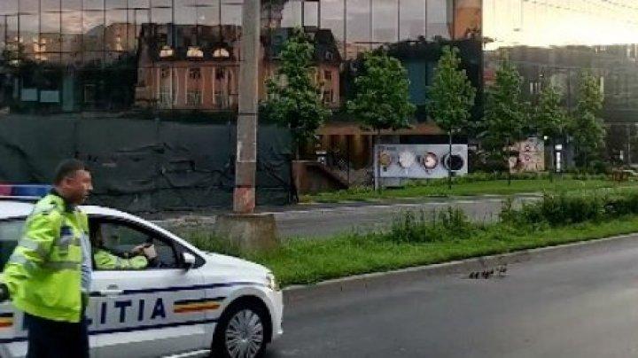В Румынии полицейские помогли утке с утятами перейти дорогу (видео)