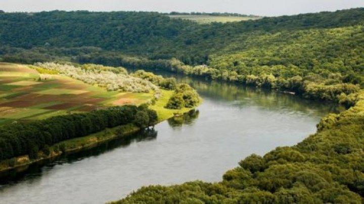 Уровень воды в реке Днестр постепенно понижается