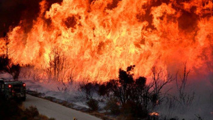 В Калифорнии эвакуировали парк аттракционов из-за пожара