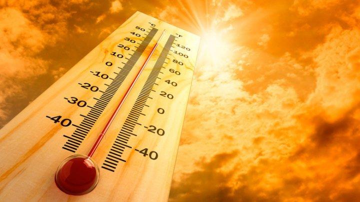 В Саудовской Аравии зафиксировали экстремальную жару до 50 градусов в тени