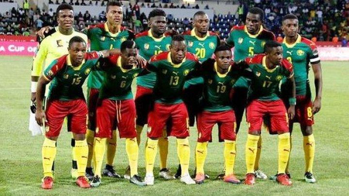 Сборная Камеруна по футболу с победы стартовала в Кубке африканских наций
