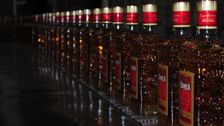 В Мексике дорожает национальный напиток текила