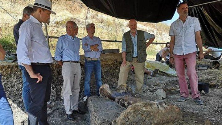 Во Франции нашли двухметровую бедренную кость динозавра