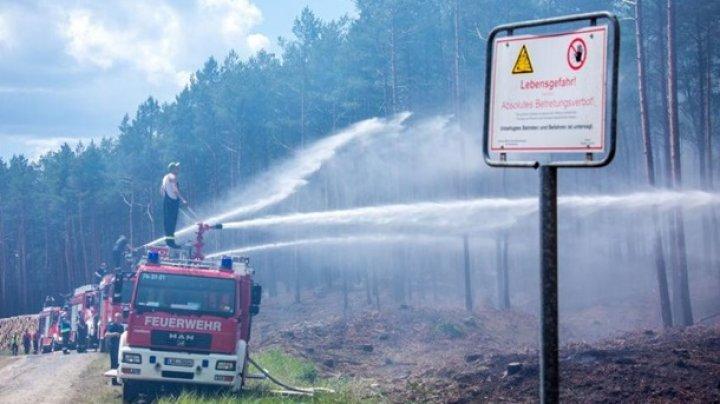 Масштабный лесной пожар бушует на севере Германии (фото)