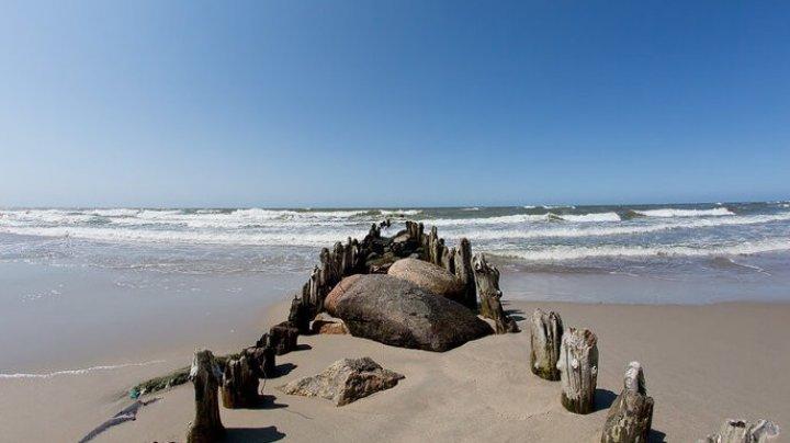 В Калининградской области нашли тело пропавшей на пляже девочки