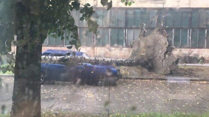 Апокалипсис на улицах Киева: ливень затопил город (видео)