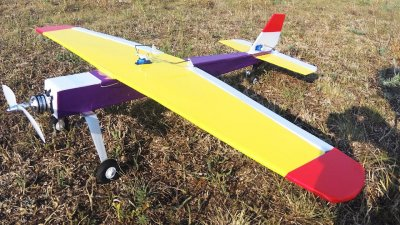 В Вадул-луй-Водэ организовали конкурс моделей миниатюрных самолетов